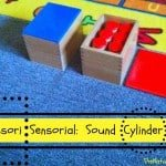 Montessori Sensorial: Sound Boxes Lesson
