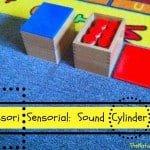 Montessori Sensorial: Sound Boxes Lesson