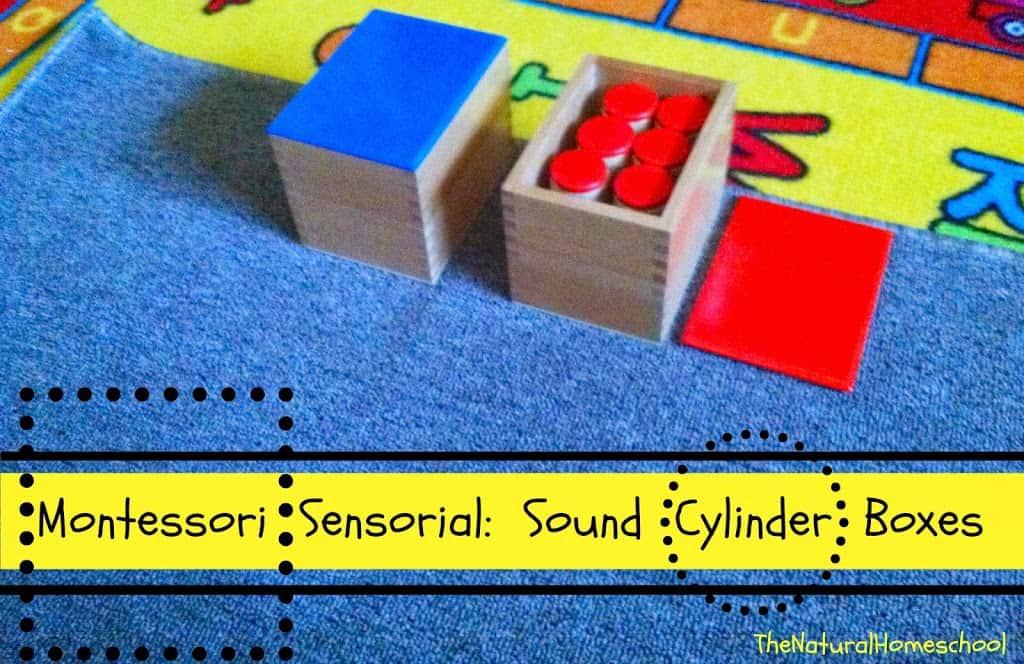 Montessori Sensorial Sound Boxes Lesson The Natural Homeschool