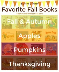Some of Our Favorite Fall Books