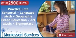 Shop Montessori Services