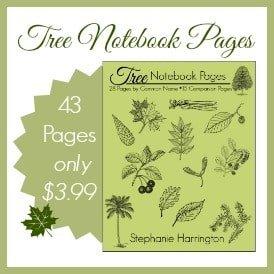 Tree Notebook Pages   Harrington Harmonies