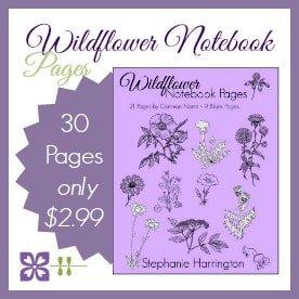 Wildflower Notebook Pages   Harrington Harmonies