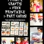 3 Pirate Crafts and FREE Printable 3-Part Cards