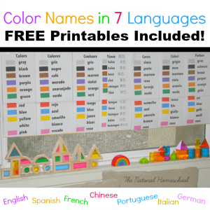 Color Names in 7 Languages FREE Printables!