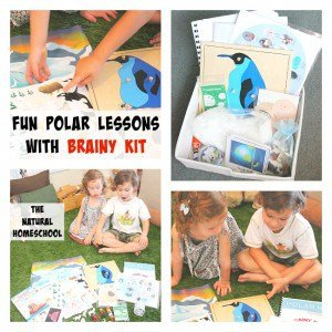 A Week of Polar Fun with Brainy Kit!
