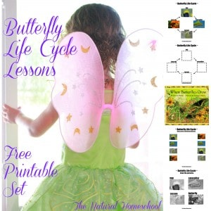 Butterfly Life Cycle Activities & Crafts (Free Printable Set)