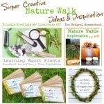 Super Creative Nature Walk Ideas & Inspiration (Link Party #37)