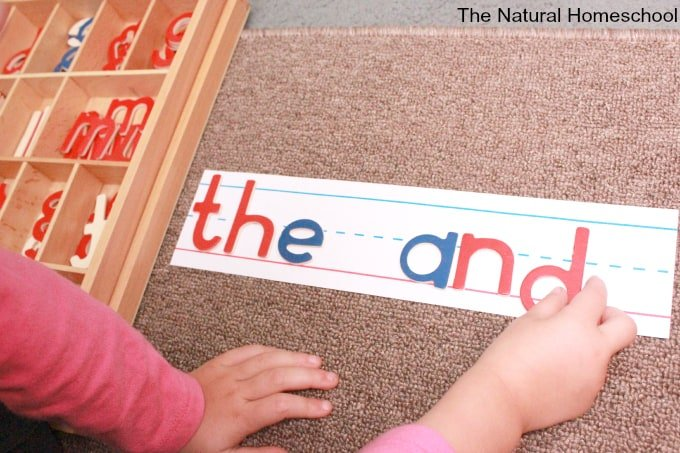 Alphabet Letters: Activities for Toddlers