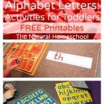 Alphabet Letters: Activities for Toddlers (Free Printables)