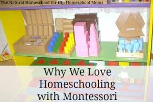 Why We Love Homeschooling Using Montessori