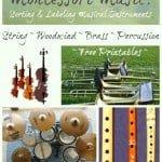 Montessori Music: Sorting & Labeling Musical Instruments {Free Printables}