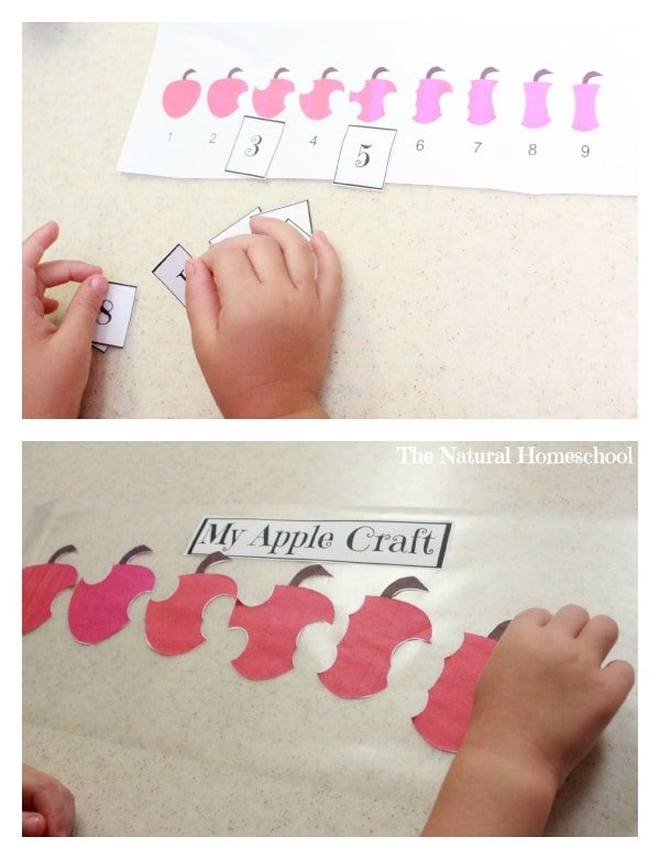 All About Apples! {Free Printable}