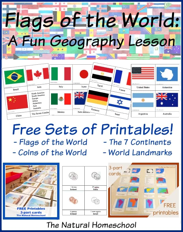 Country Flags of the World: A Fun Geography Lesson {4 Free ...