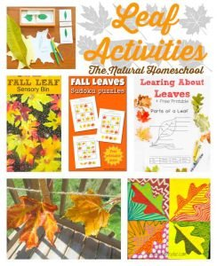 Fall Leaves Activities for Families (Link Party #59)
