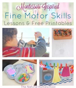Montessori-Inspired Fine Motor Skills for Preschoolers (Lessons & Free Printables)
