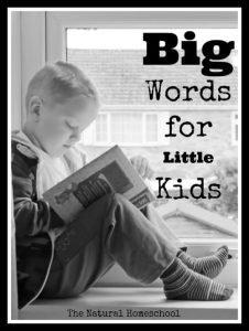 Big Words for Little Kids