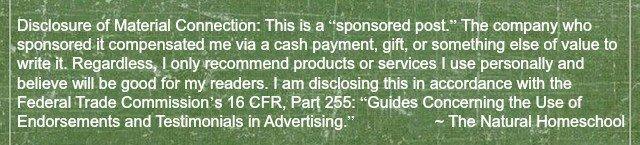 sponsored disclaimer 2