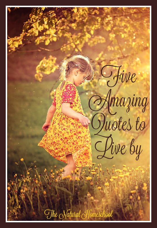 Five Amazing Quotes to Live by - The Natural Homeschool