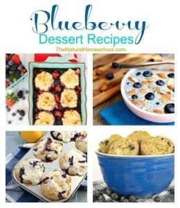 Blueberry Dessert Recipes {Link Party #84}