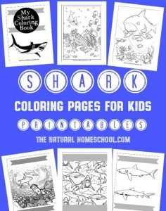 Shark Coloring Pages for Kids {Printables}