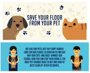 Save your Floor from your Pet