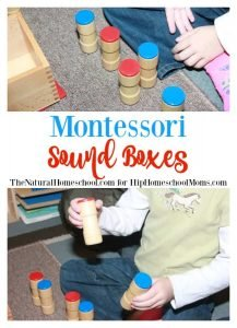 Montessori Sound Boxes {Free Printable Nomenclature Cards}