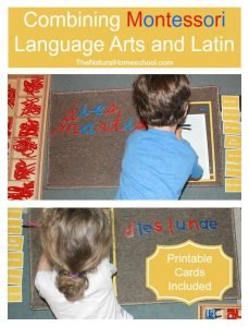Montessori Language Arts & Latin {Printable Cards}