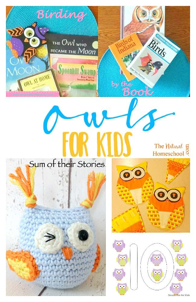 owls-for-kids