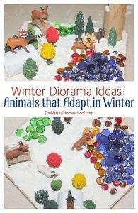 Winter Diorama Ideas: Animals that Adapt in Winter