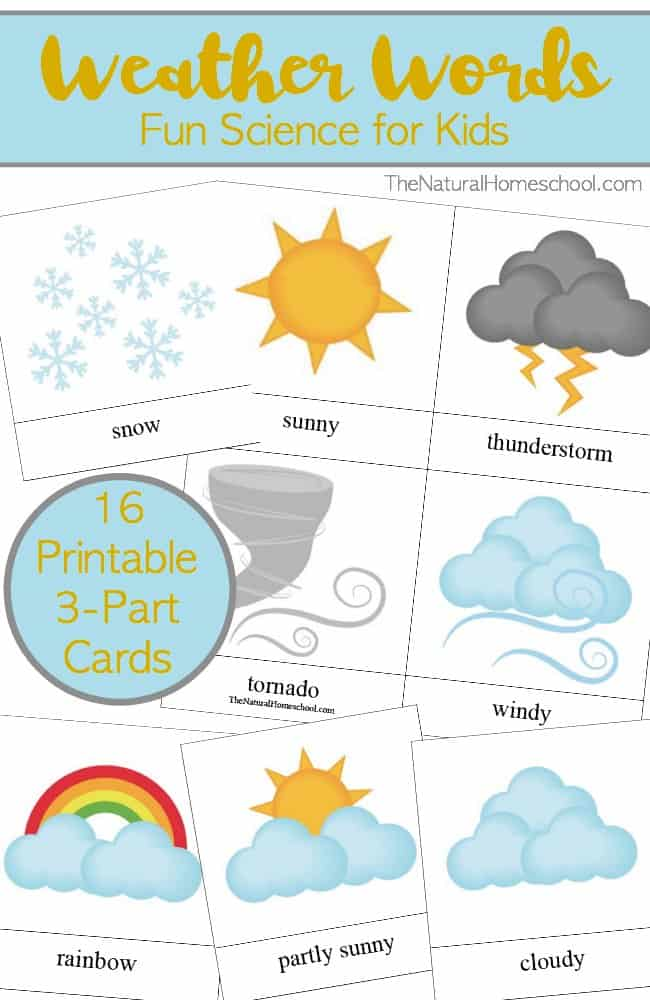 Weather Words For Kids Printable 3 Part Card Set The