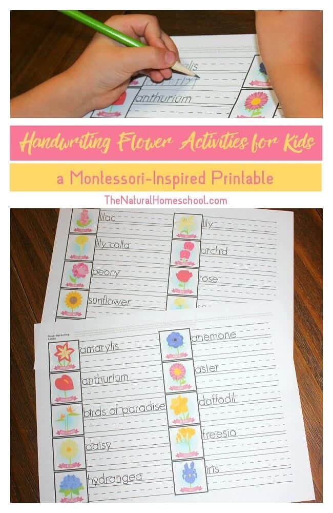 Here are some excellent Handwriting Flower Activities for Kids {a Montessori-Inspired Printable} that goes with our Flower Memory Games for Kids. I hope your littles enjoy it as much as mine does.