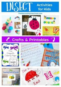 Insect Activities for Kids (Crafts & Printables)
