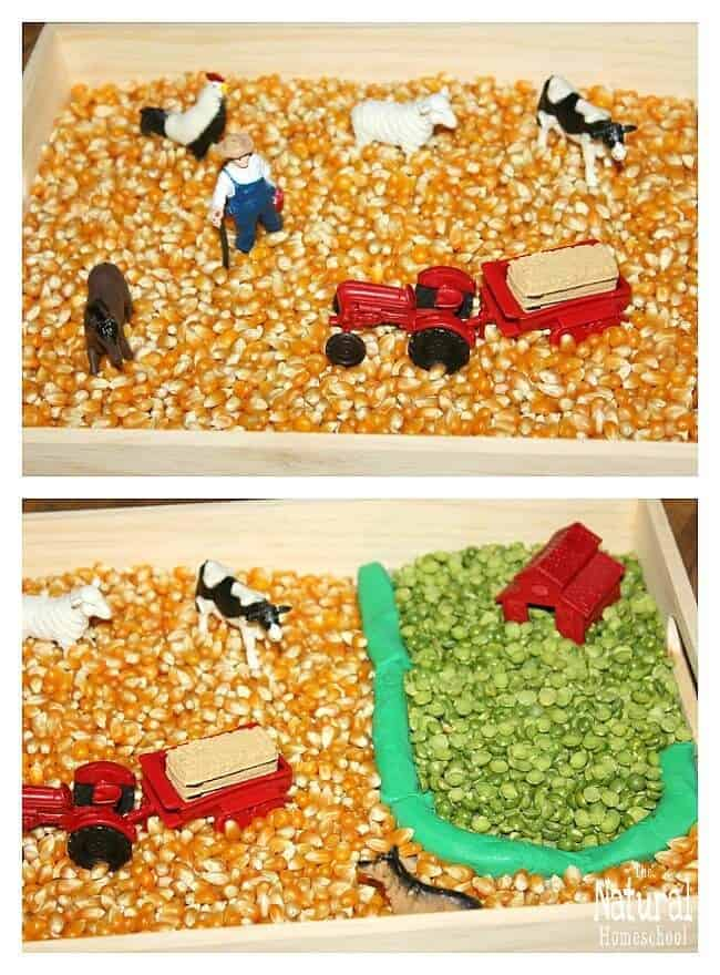 In this post, we will show you some wonderful farm activities for kids! It was so much fun playing with this sensory bin and other great farm activities!