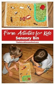 Farm Activities for Kids – Sensory Bin