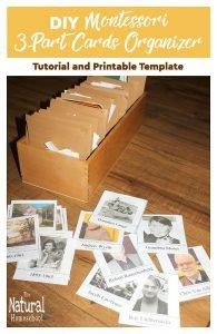 DIY Montessori 3-Part Cards Organizer {Tutorial and Printable Template}