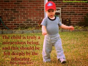 Homeschooling August 2013 Part 5