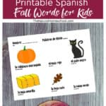 We used all Fall colors and Fall objects for our Spanish Fall words for kids activity.
