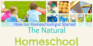Our 2012 Homeschooling by Week