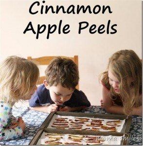http://www.mamasmiles.com/cinnamon-apple-peels/