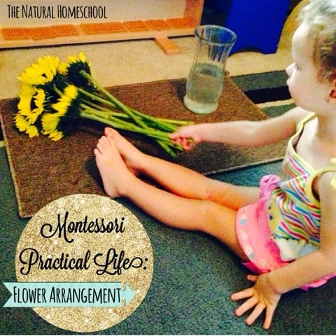 Montessori Practical Life: Flower Arrangement