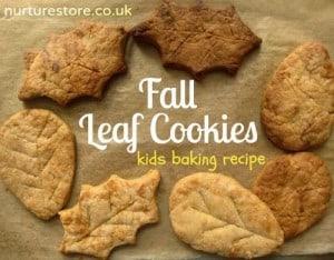http://nurturestore.co.uk/gingerbread-recipe-3