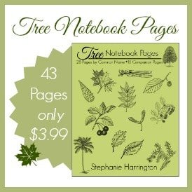 Tree Notebook Pages | Harrington Harmonies