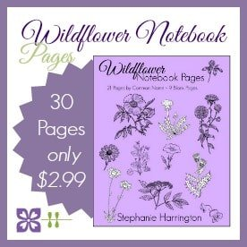 Wildflower Notebook Pages | Harrington Harmonies