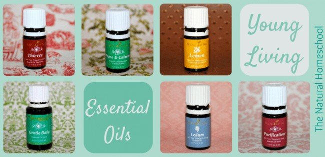 24 Uses for Thieves Essential Oil Blend