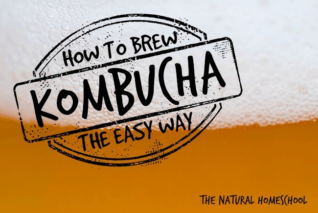 How to Make a Kombucha Brew (the easy way)