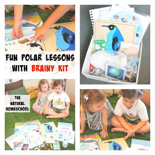 7 Lessons of Polar Fun with Brainy Kit