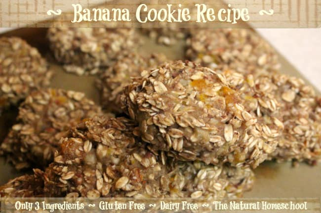 3-Ingredient Banana Cookie Recipe (Gluten Free & Dairy Free)