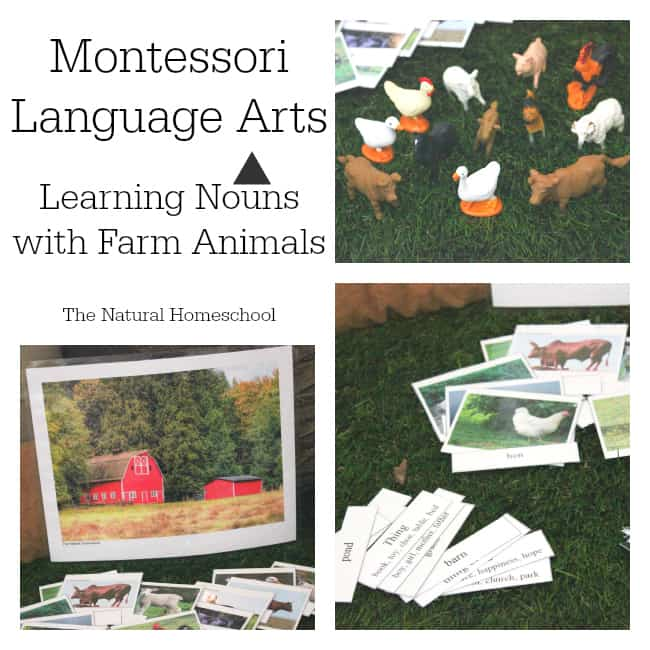 Montessori Language Arts: Learning Nouns with FREE Printables