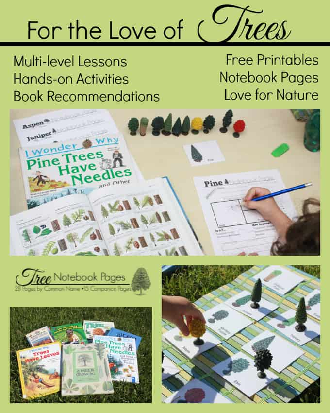 """For the Love of Trees"" Lessons, Books, Printables & Hands-on Activities"